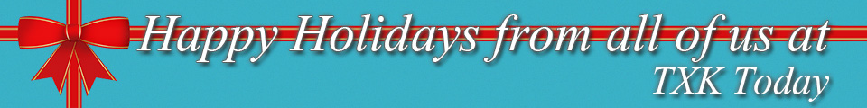 holiday-banner-5-blue